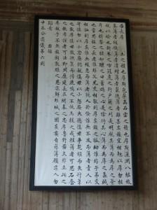 P1040349